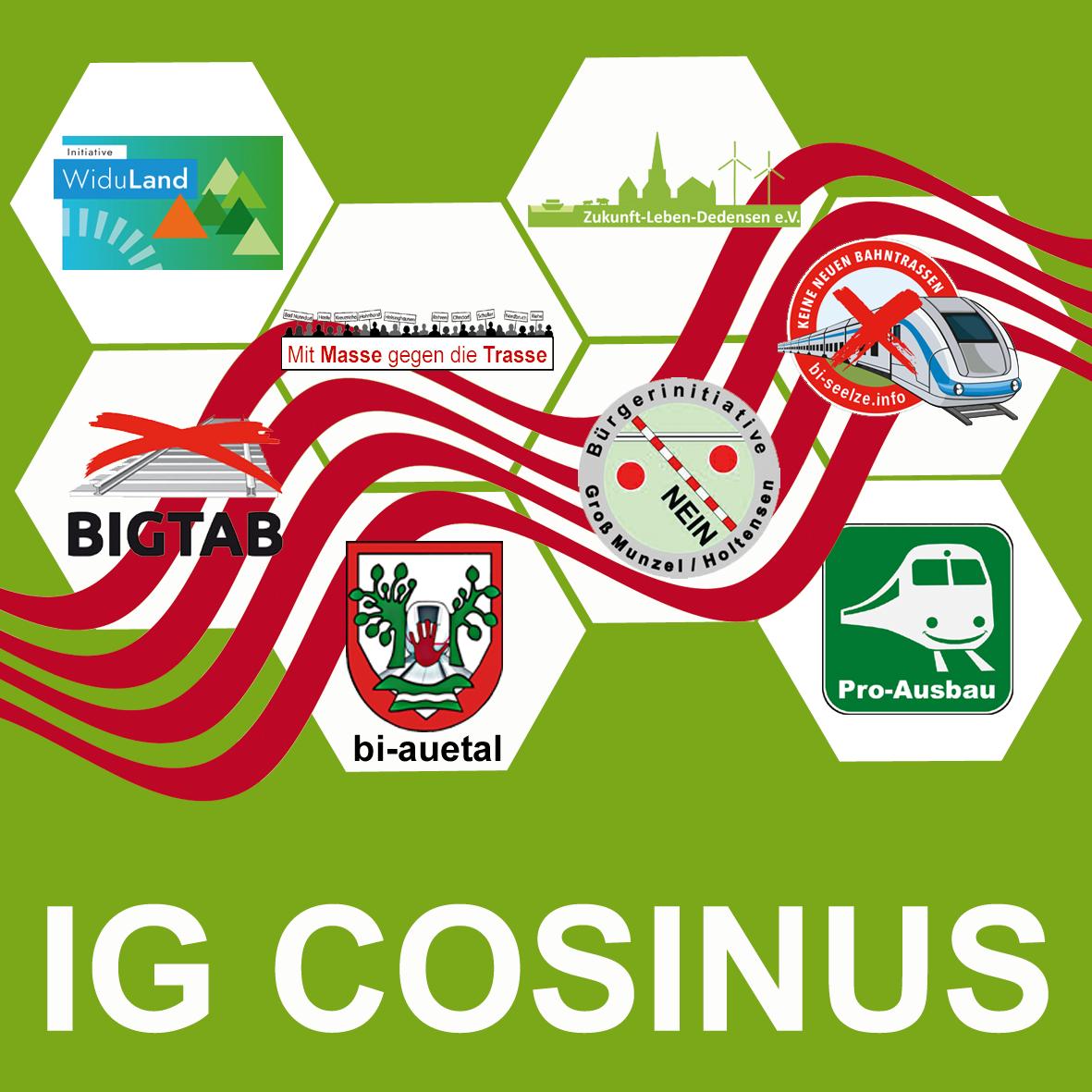 Logo IG Cosinus